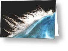 mane beauty Greeting Card by ELA-EquusArt