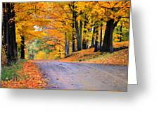 Maples Of Rupert Vermont Greeting Card by Thomas Schoeller