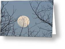 March Moon Greeting Card by Liz Vernand