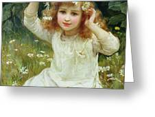 Marguerites Greeting Card by Frederick Morgan