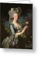 Marie Antoinette Greeting Card by Elisabeth Louise Vigee Lebrun