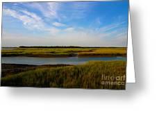Marshland Charleston South Carolina Greeting Card by Susanne Van Hulst