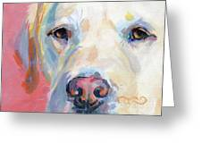 Martha's Pink Nose Greeting Card by Kimberly Santini