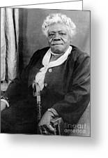 Mary Mcleod Bethune Greeting Card by Granger