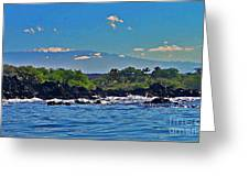 Mauna Kea With Snow Greeting Card by Bette Phelan