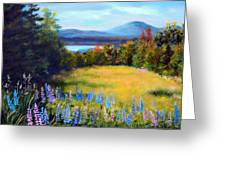 Meadow Lupine II Greeting Card by Laura Tasheiko