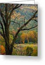 Melody Of Autumn II Greeting Card by Debra     Vatalaro