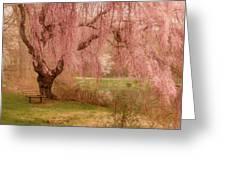 Memories - Holmdel Park Greeting Card by Angie Tirado