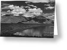 Mesmerized... Greeting Card by Nina Stavlund