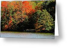 Michigan Fall Colors 5 Greeting Card by Scott Hovind