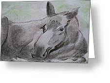 Mildred The Moose Resting Greeting Card by Stella Sherman