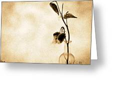 Milk Weed In A Bottle Greeting Card by Bob Orsillo