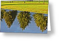 Mirroring Trees Greeting Card by Heiko Koehrer-Wagner