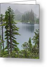 Mist At Snow Lake Greeting Card by Charles Robinson