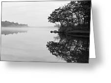 Misty Cove Greeting Card by Luke Moore