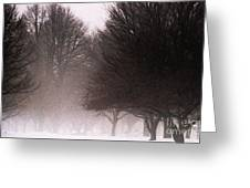 Misty Greeting Card by Linda Knorr Shafer