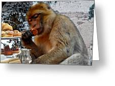 Monkey Tea Party Greeting Card by Jan Steadman-Jackson
