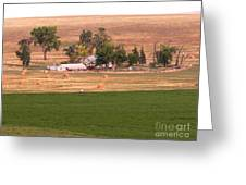 Montana Harvest Time Greeting Card by David Bearden
