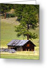 Montana Ranch 2 Greeting Card by Marty Koch