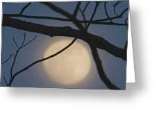 Moon Glow Greeting Card by Lindie Racz