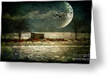 Moonstruck Greeting Card by Lois Bryan