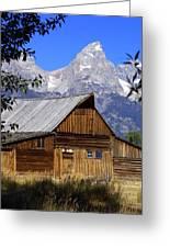 Mormon Row Barn  1 Greeting Card by Marty Koch