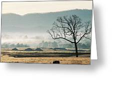 Morning Mist Greeting Card by Linda A Waterhouse