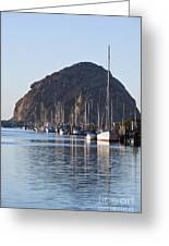 Morro Bay Sailboats Greeting Card by Bill Brennan - Printscapes