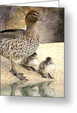 Mother Of Twins Greeting Card by Holly Kempe