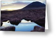 Mount Errigal, County Donegal, Ireland Greeting Card by Gareth McCormack