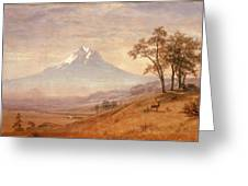 Mount Hood Greeting Card by Albert Bierstadt