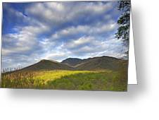 Mount LeConte in Great Smoky Mountains National Park Tennessee Greeting Card by Brendan Reals