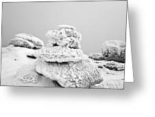 Mount Liberty - White Mountains New Hampshire Greeting Card by Erin Paul Donovan