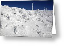 Mount Washington New Hampshire - Rime Ice Greeting Card by Erin Paul Donovan