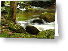 Mountain Stream 2 Greeting Card by William Jones