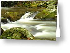 Mountain Stream 3 Greeting Card by William Jones