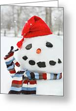 Mr. Snowman Greeting Card by Sandra Cunningham