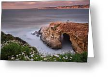 Mystical Cave Greeting Card by Larry Marshall