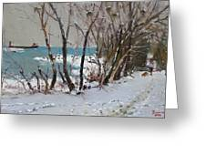 Naked Trees by the Lake Shore Greeting Card by Ylli Haruni