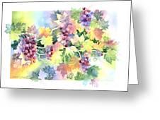 Napa Valley Morning Greeting Card by Deborah Ronglien