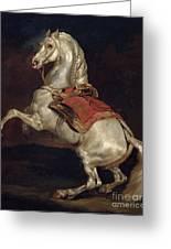 Napoleon's Stallion Tamerlan Greeting Card by Theodore Gericault