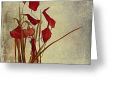 Nature Morte Du Moment Greeting Card by Aimelle