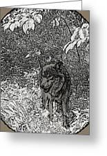 Nature Walk Wolf Greeting Card by Debra     Vatalaro
