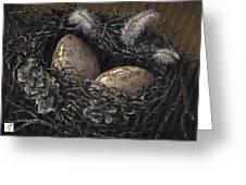 Nesting Greeting Card by Adam Zebediah Joseph