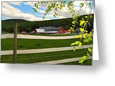 New England Farm Greeting Card by Catherine Reusch  Daley