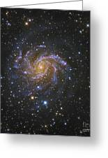Ngc 6946, Also Known As The Fireworks Greeting Card by Robert Gendler