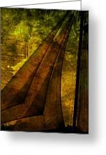 Night Sailing Greeting Card by Susanne Van Hulst