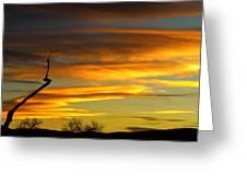 November Sunset Greeting Card by James BO  Insogna