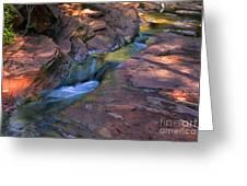 Oak Creek Canyon Splendor Greeting Card by Sandra Bronstein