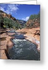 Oak Creek Flowing Through The Red Rocks Greeting Card by Rich Reid